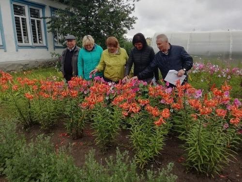 Здесь будет город-сад! Жителей Пластовского района призывают добавить малой родине красоты