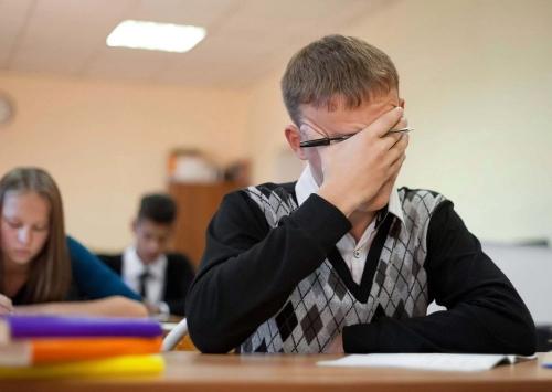 Открытый урок. Всероссийские проверочные работы в школах начнутся уже в марте